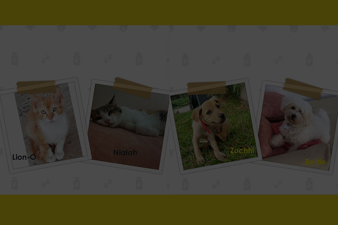 Pet Competition – Winners!